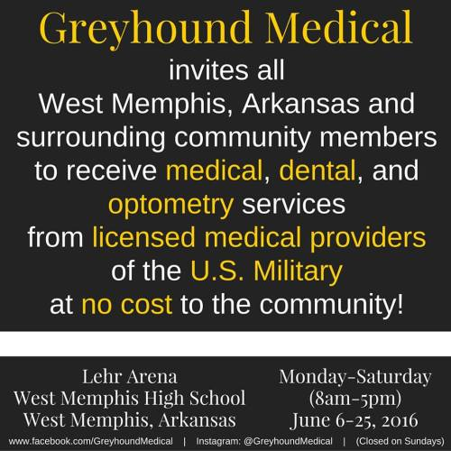 greyhound medical