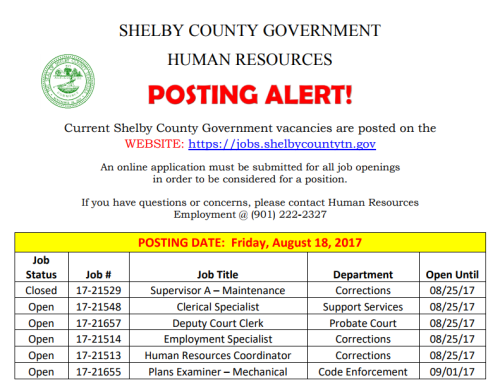 Shelby County 8-18